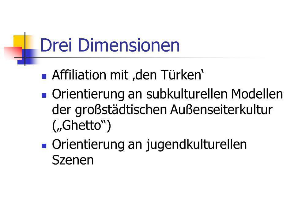 Drei Dimensionen Affiliation mit den Türken Orientierung an subkulturellen Modellen der großstädtischen Außenseiterkultur (Ghetto) Orientierung an jug