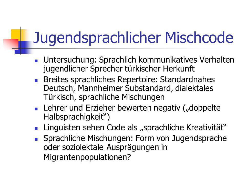 Sprachwechsel Code Switching vs.Code Mixing Bedeutsamer Wechsel von einer Sprache zur anderen vs.