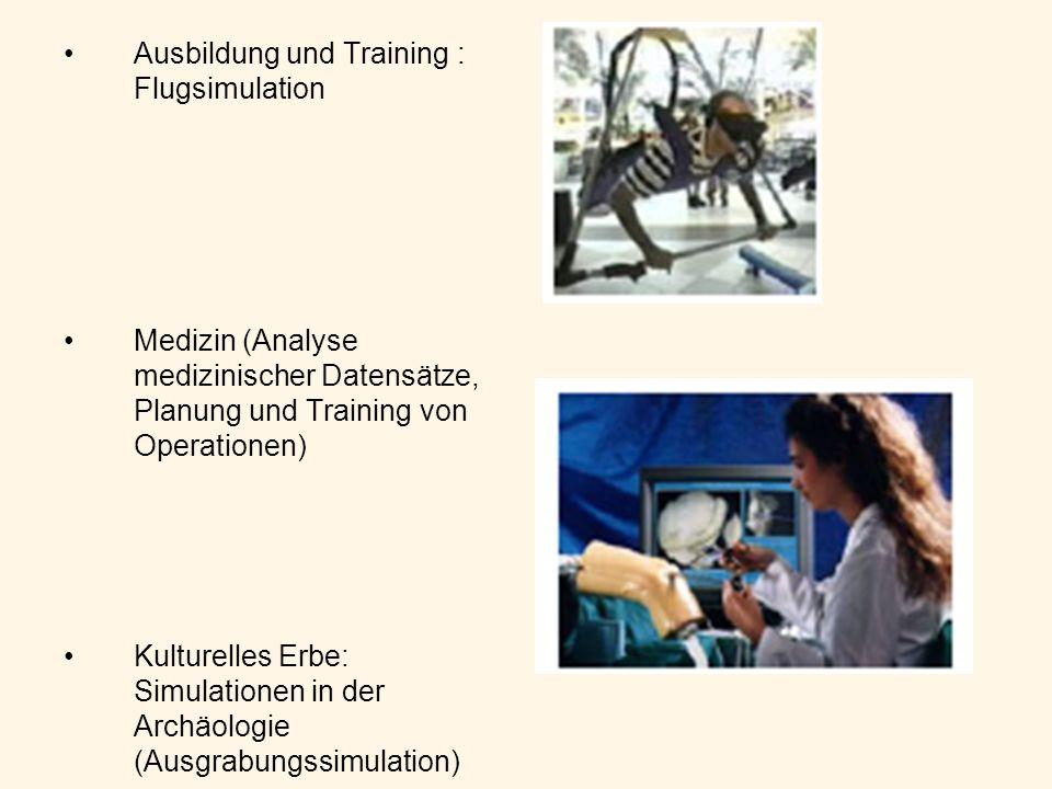 Ausbildung und Training : Flugsimulation Medizin (Analyse medizinischer Datensätze, Planung und Training von Operationen) Kulturelles Erbe: Simulation