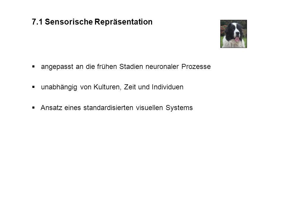7.1 Sensorische Repräsentation angepasst an die frühen Stadien neuronaler Prozesse unabhängig von Kulturen, Zeit und Individuen Ansatz eines standardi