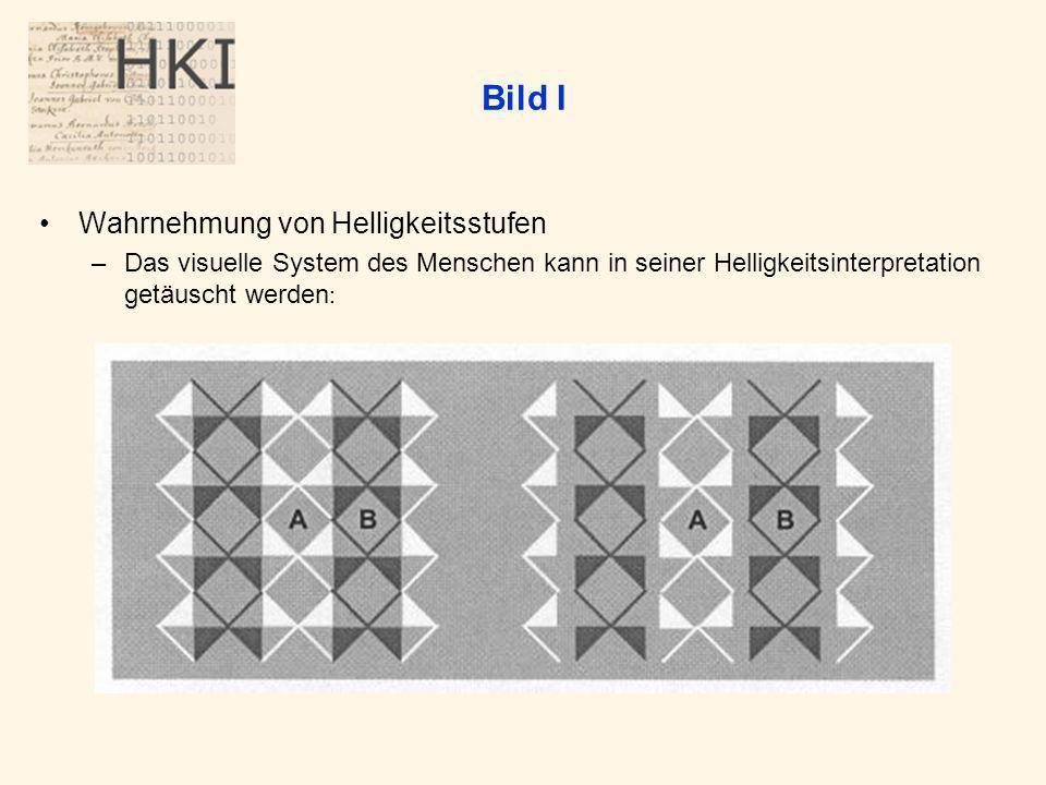 Bild I Wahrnehmung von Helligkeitsstufen –Das visuelle System des Menschen kann in seiner Helligkeitsinterpretation getäuscht werden :