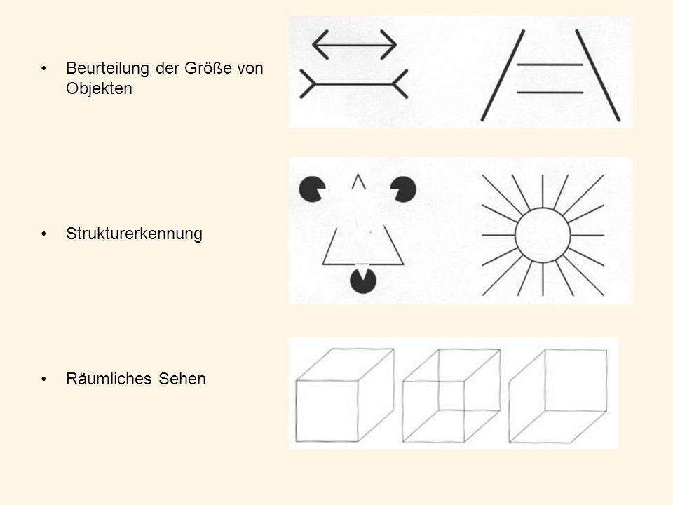 Beurteilung der Größe von Objekten Strukturerkennung Räumliches Sehen