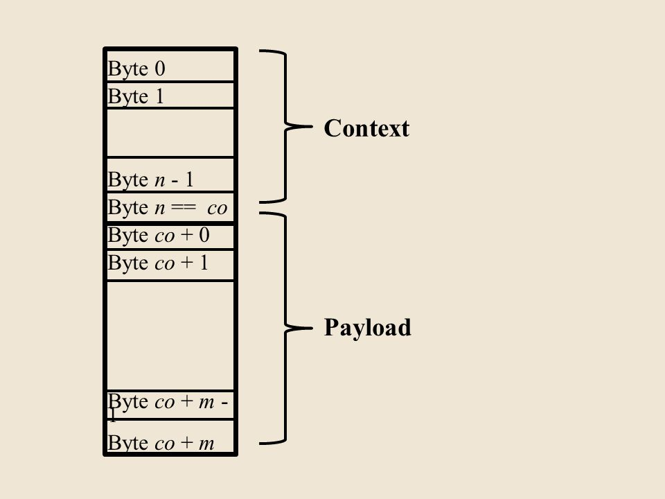 Byte 0 Byte 1 Byte n - 1 Byte n == co Byte co + 0 Byte co + 1 Byte co + m - 1 Byte co + m Payload Context