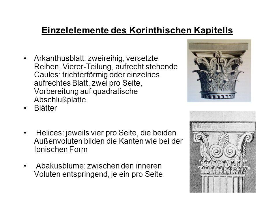 Einzelelemente des Korinthischen Kapitells Arkanthusblatt: zweireihig, versetzte Reihen, Vierer-Teilung, aufrecht stehende Caules: trichterförmig oder