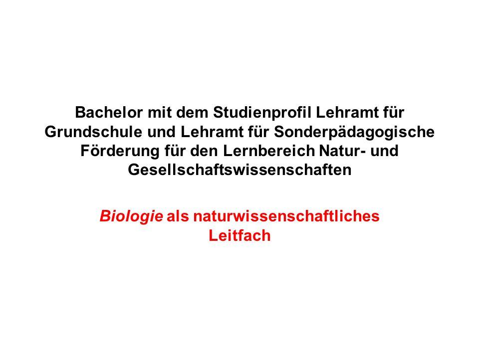Bachelor mit dem Studienprofil Lehramt für Grundschule und Lehramt für Sonderpädagogische Förderung für den Lernbereich Natur- und Gesellschaftswissen