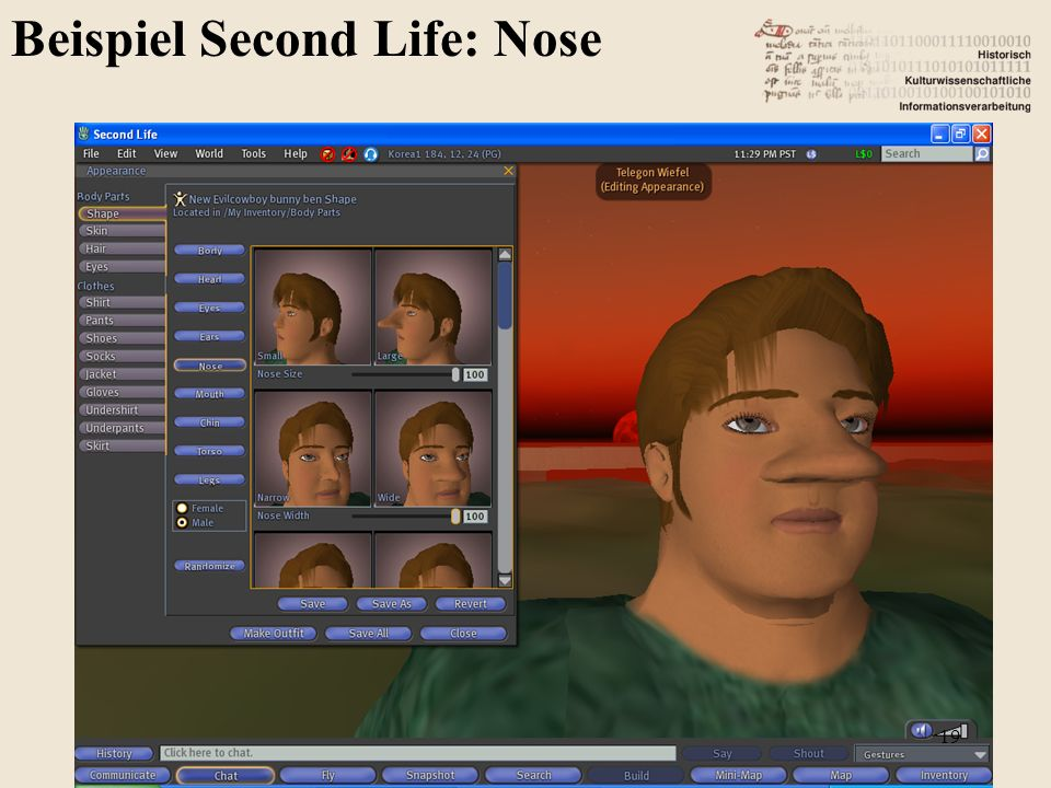 Beispiel Second Life: Nose 19