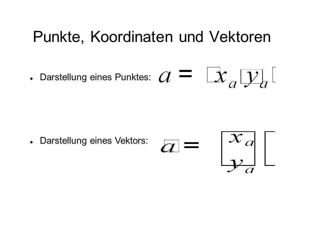 Punkte, Koordinaten und Vektoren Darstellung eines Punktes: Darstellung eines Vektors: