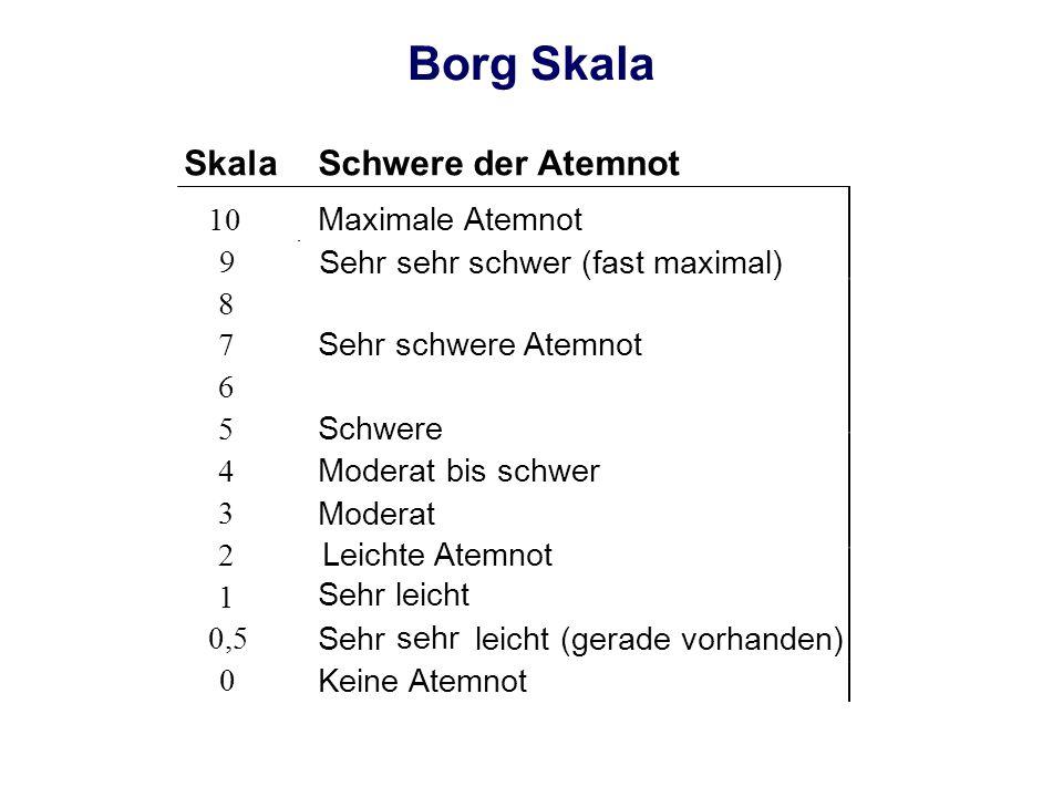 Borg Skala