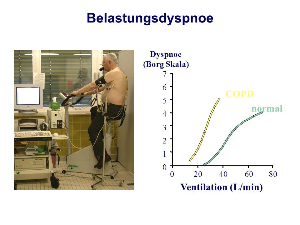 COPD normal Ventilation (L/min) 020406080 0 1 2 3 4 5 6 7 Dyspnoe (Borg Skala) Belastungsdyspnoe