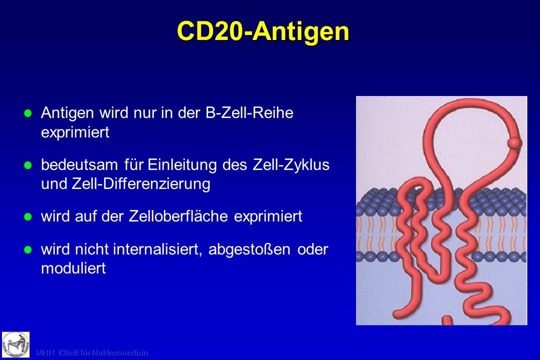 Keine Expression des CD20-Antigen auf Stammzellen oder Plasmazellen Pluripotente Stammzelle Lymphoide Stammzelle Prä-B-ZelleB-ZelleAktivierte B-Zelle Plasma- zelle KnochenmarkBlut, Lymphe CD20-Antigen