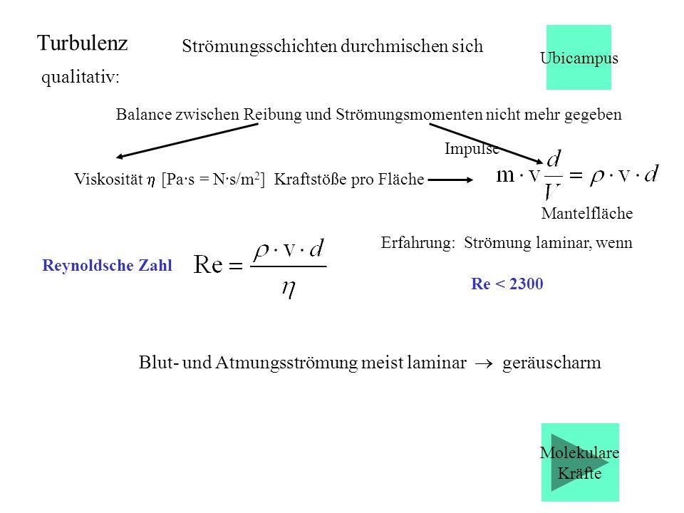 Strömungsschichten durchmischen sich Reynoldsche Zahl Erfahrung: Strömung laminar, wenn Re < 2300 Blut- und Atmungsströmung meist laminar geräuscharm