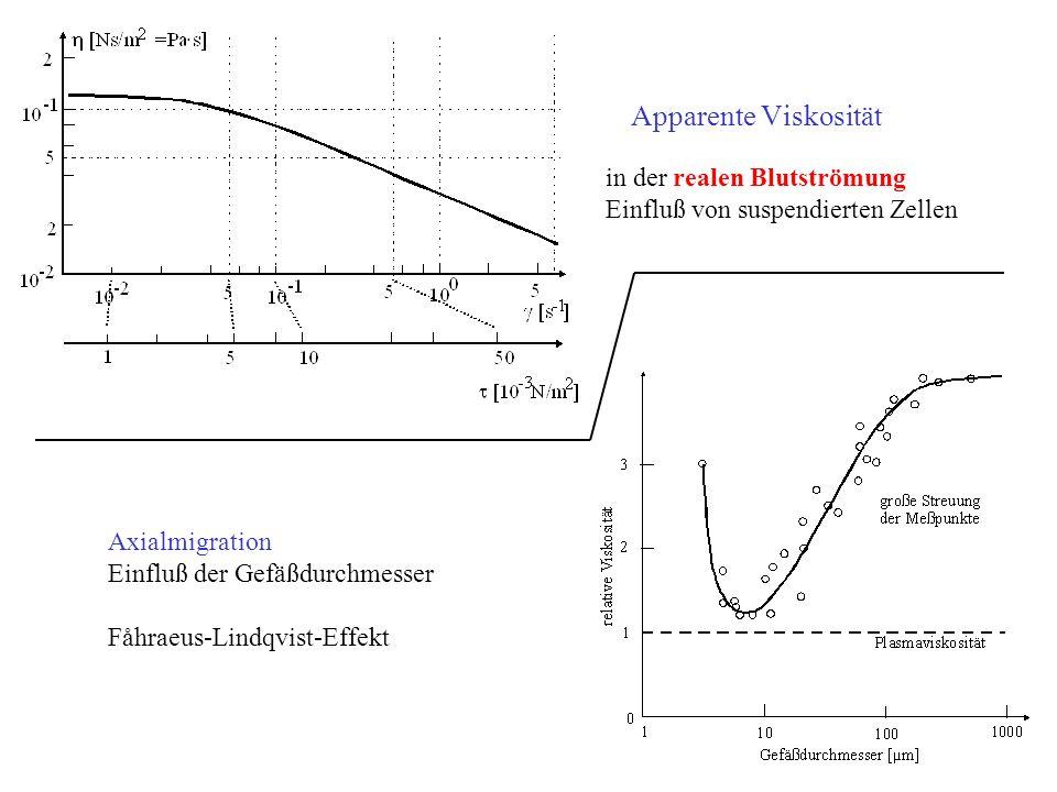 in der realen Blutströmung Einfluß von suspendierten Zellen Axialmigration Einfluß der Gefäßdurchmesser Fåhraeus-Lindqvist-Effekt · Apparente Viskosit