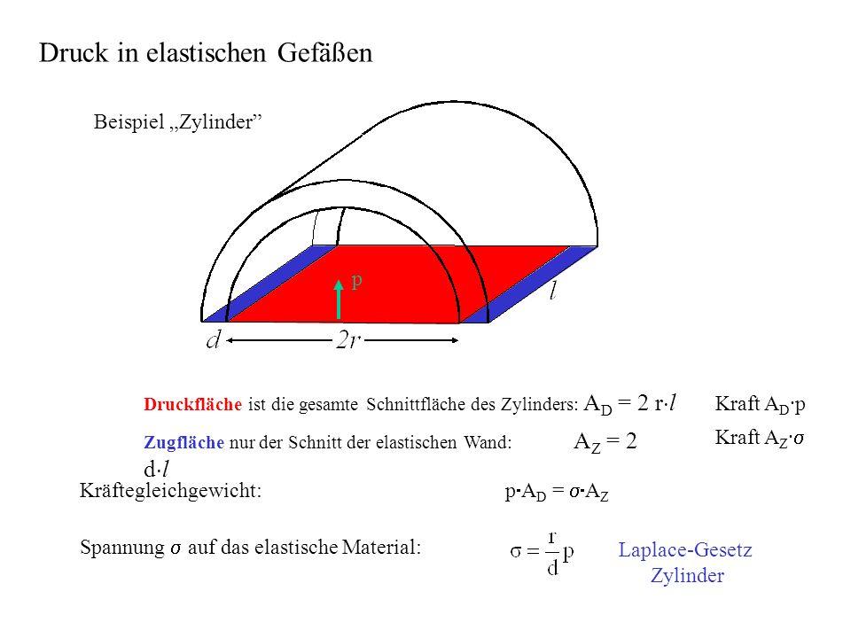 Kräftegleichgewicht: p A D = A Z Spannung auf das elastische Material: Laplace-Gesetz Zylinder p Beispiel Zylinder Druck in elastischen Gefäßen Druckfläche ist die gesamte Schnittfläche des Zylinders: A D = 2 r l Kraft A D ·p Zugfläche nur der Schnitt der elastischen Wand: A Z = 2 d l Kraft A Z ·