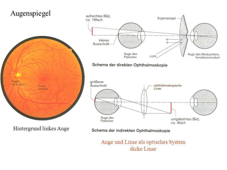 Hintergrund linkes Auge Augenspiegel Auge und Linse als optisches System dicke Linse
