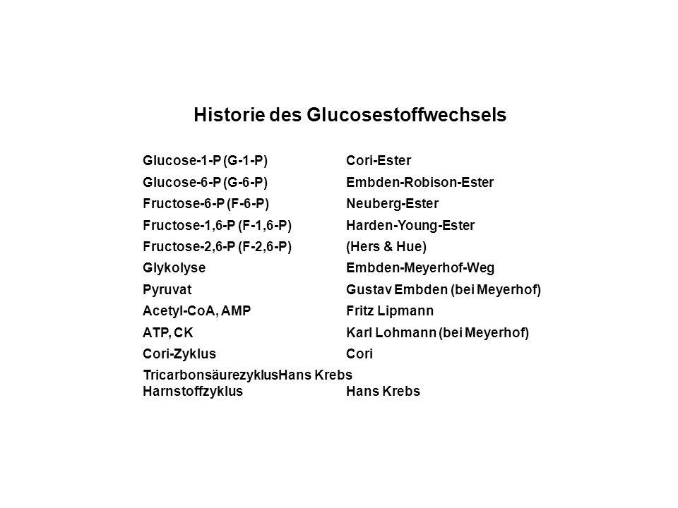 Historie des Glucosestoffwechsels Glucose-1-P (G-1-P)Cori-Ester Glucose-6-P (G-6-P)Embden-Robison-Ester Fructose-6-P (F-6-P)Neuberg-Ester Fructose-1,6