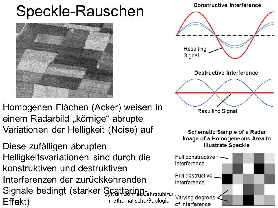 Sylvain Bonnet, Lehrstuhl für mathematische Geologie Speckle-Rauschen Homogenen Flächen (Acker) weisen in einem Radarbild körnige abrupte Variationen der Helligkeit (Noise) auf Diese zufälligen abrupten Helligkeitsvariationen sind durch die konstruktiven und destruktiven Interferenzen der zurückkehrenden Signale bedingt (starker Scattering- Effekt)