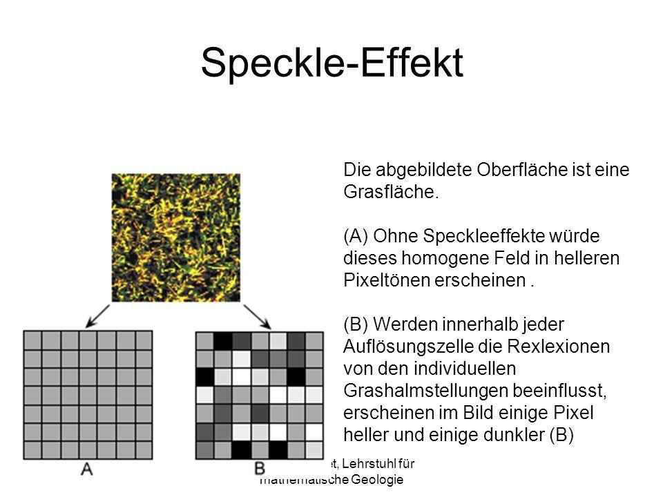 Sylvain Bonnet, Lehrstuhl für mathematische Geologie Speckle-Effekt Die abgebildete Oberfläche ist eine Grasfläche.