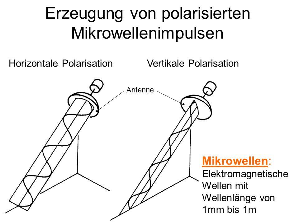 Sylvain Bonnet, Lehrstuhl für mathematische Geologie Erzeugung von polarisierten Mikrowellenimpulsen Antenne Horizontale Polarisation Vertikale Polarisation Mikrowellen: Elektromagnetische Wellen mit Wellenlänge von 1mm bis 1m