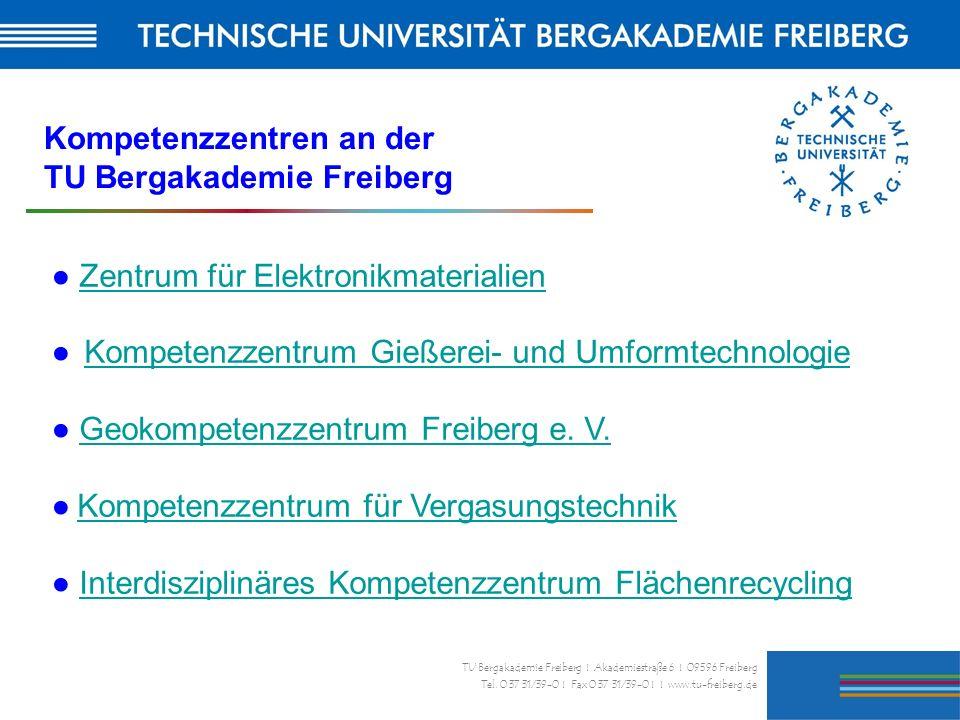 31 TU Bergakademie Freiberg I Akademiestraße 6 I 09596 Freiberg Tel. 0 37 31/39-0 I Fax 0 37 31/39-0 I I www.tu-freiberg.de Zentrum für Elektronikmate