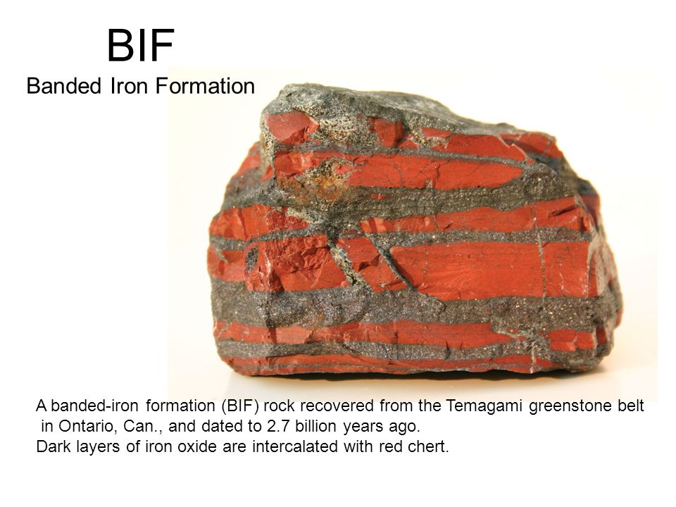 A banded-iron formation (BIF) rock recovered from the Temagami greenstone belt in Ontario, Can., and dated to 2.7 billion years ago. Dark layers of ir