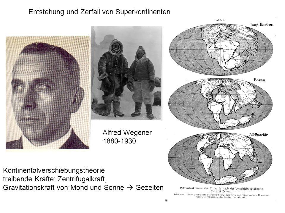 Entstehung und Zerfall von Superkontinenten Alfred Wegener 1880-1930 Kontinentalverschiebungstheorie treibende Kräfte: Zentrifugalkraft, Gravitationsk