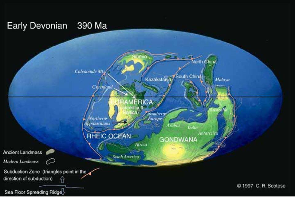 Rodinia – der letzte Präkambrische Superkontinent (~ 1Ga) Grenville Orogenesen