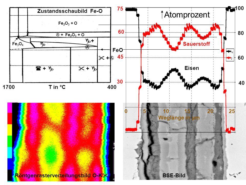 0 5 10 15 20 25 Weglänge in µm Atomprozent Sauerstoff Eisen 100 80 60 40 60 45 75 30 Röntgenrasterverteilungsbild O-K BSE-Bild Zustandsschaubild Fe-O