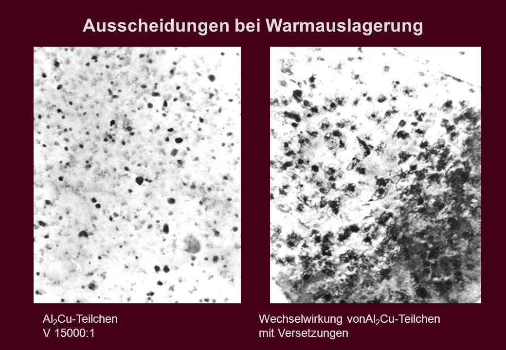 Ausscheidungen bei Warmauslagerung Al 2 Cu-Teilchen Wechselwirkung vonAl 2 Cu-Teilchen V 15000:1 mit Versetzungen
