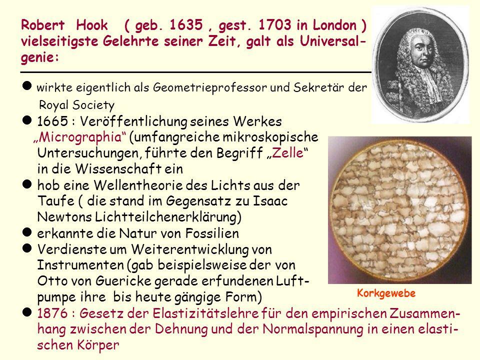 Robert Hook ( geb. 1635, gest. 1703 in London ) vielseitigste Gelehrte seiner Zeit, galt als Universal- genie: wirkte eigentlich als Geometrieprofesso