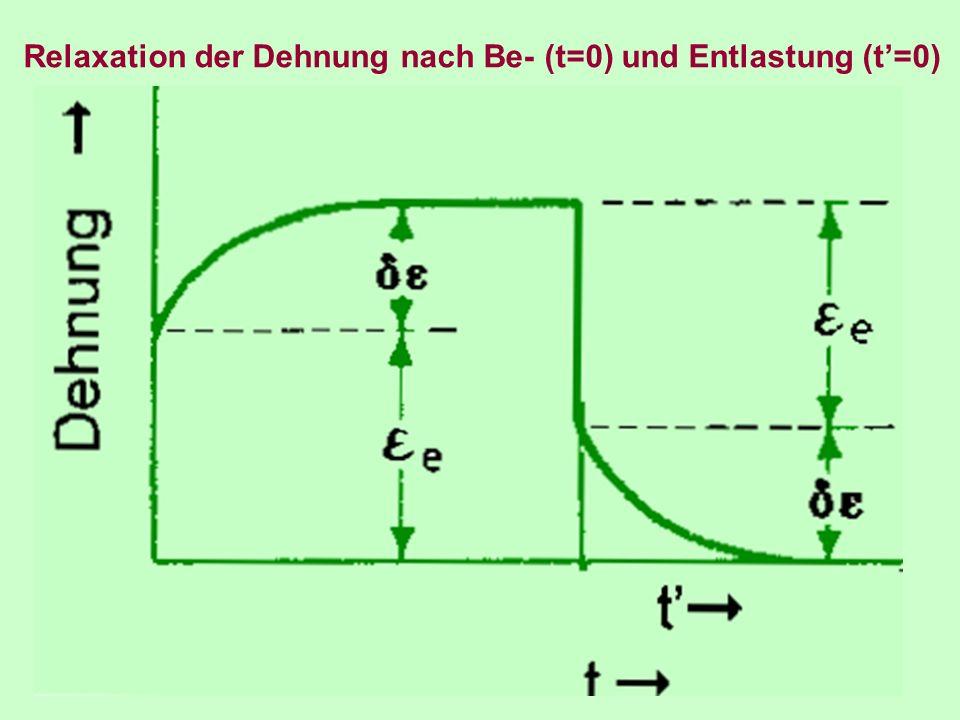 Relaxation der Dehnung nach Be- (t=0) und Entlastung (t=0)