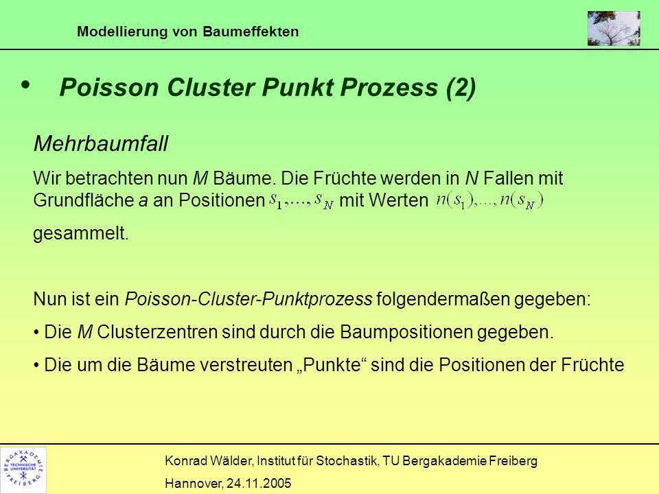 Modellierung von Baumeffekten Konrad Wälder, Institut für Stochastik, TU Bergakademie Freiberg Hannover, 24.11.2005 Poisson Cluster Punkt Prozess (3) Im allgemeinen hat jeder Baum seine eigene Fruchtanzahl.