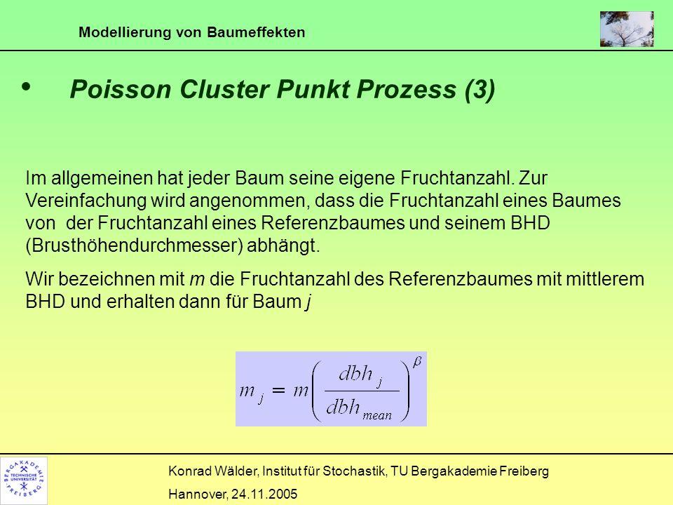 Modellierung von Baumeffekten Konrad Wälder, Institut für Stochastik, TU Bergakademie Freiberg Hannover, 24.11.2005 Poisson Cluster Punkt Prozess (4) Der Erwartungswert in einer Falle der Fläche a ist gleich ist der Abstand zwischen Baum j und der Falle an Position s Die Fruchtanzahl folgt einer Poisson-Verteilung mit Fallenintensität