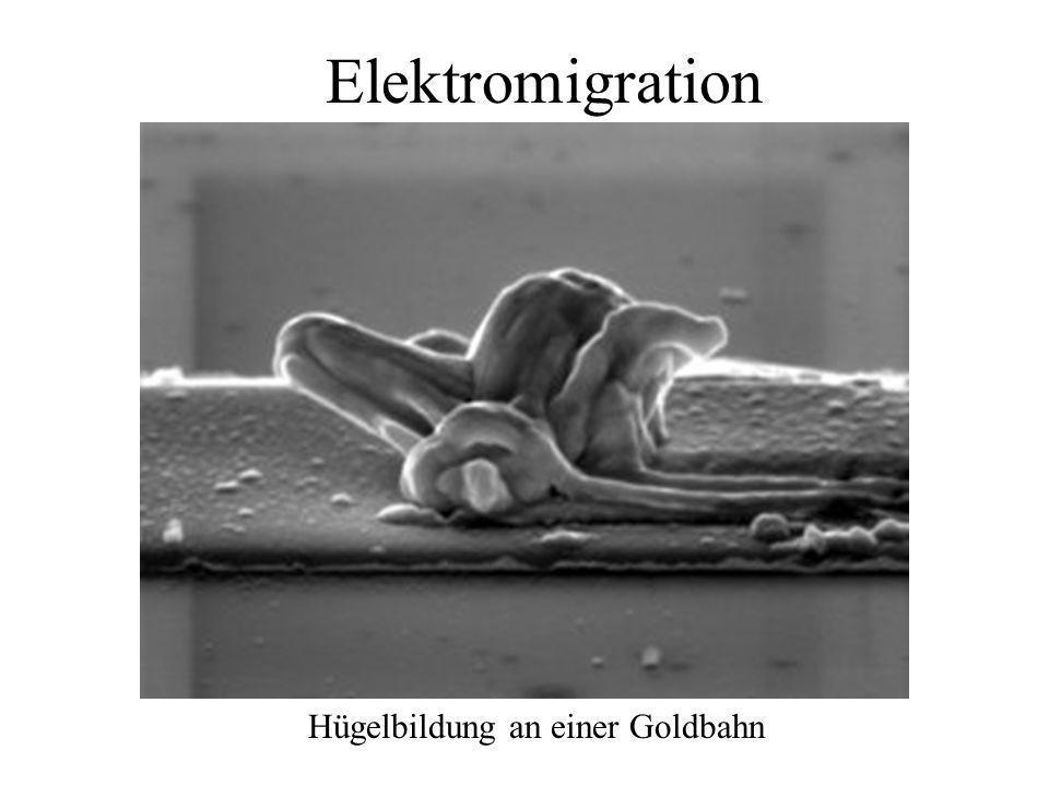 Elektromigration Hügelbildung an einer Goldbahn