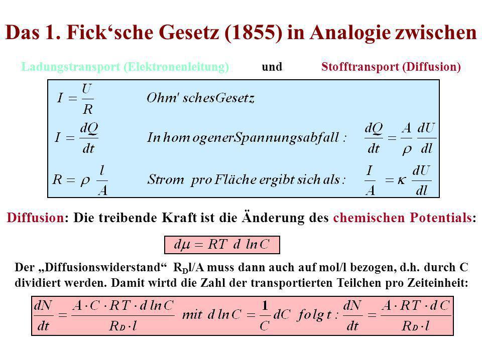 Das 1. Ficksche Gesetz (1855) in Analogie zwischen Ladungstransport (Elektronenleitung) und Stofftransport (Diffusion) Diffusion: Die treibende Kraft