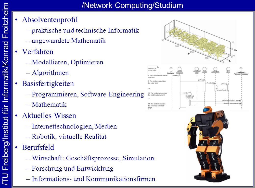 /TU Freiberg/Institut für Informatik/Konrad Froitzheim /Network Computing/Studium Absolventenprofil –praktische und technische Informatik –angewandete