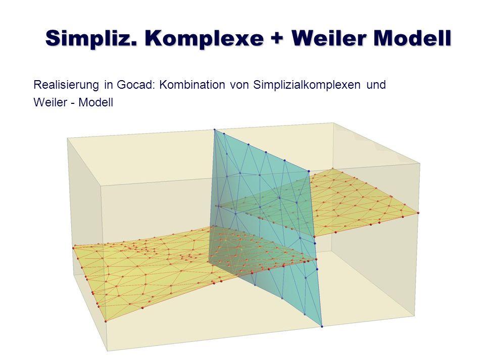 Simpliz. Komplexe + Weiler Modell Realisierung in Gocad: Kombination von Simplizialkomplexen und Weiler - Modell