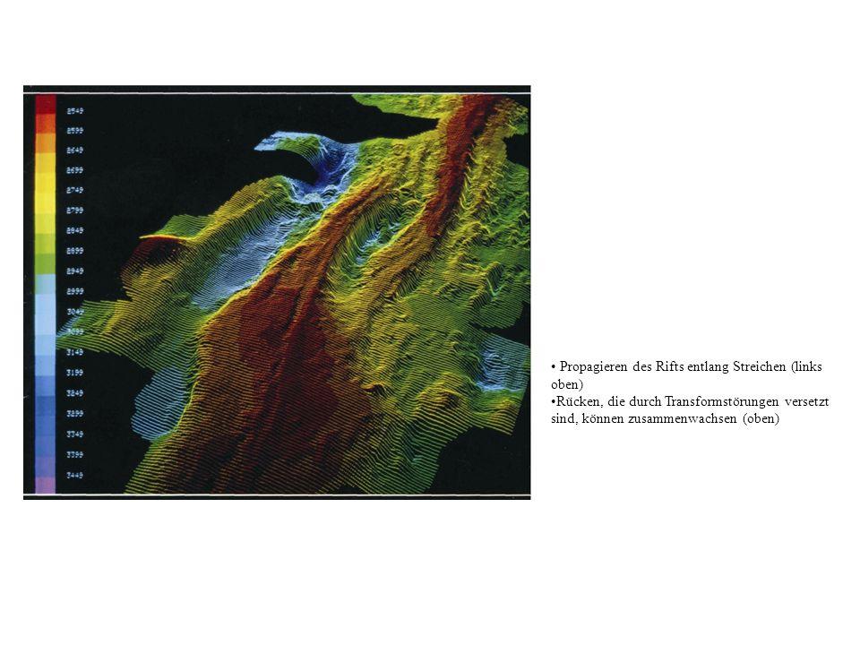 Propagieren des Rifts entlang Streichen (links oben) Rücken, die durch Transformstörungen versetzt sind, können zusammenwachsen (oben)