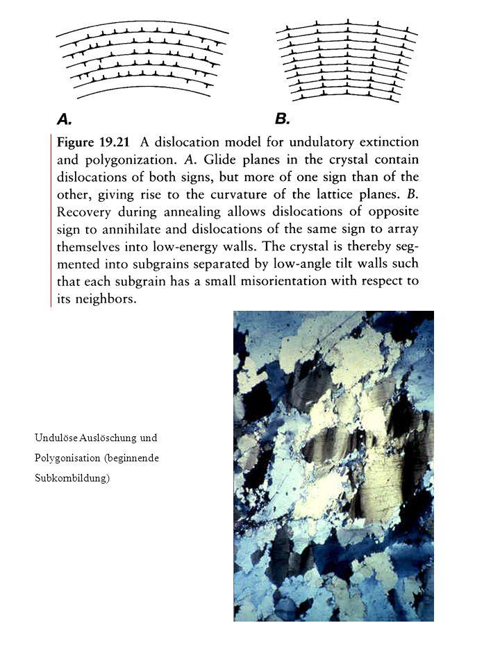 Undulöse Auslöschung und Polygonisation (beginnende Subkornbildung)