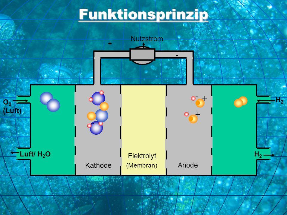 Funktionsprinzip O 2 (Luft) H2H2 Luft/ H 2 O H 2 Kathode Elektrolyt (Membran) Anode Nutzstrom + -