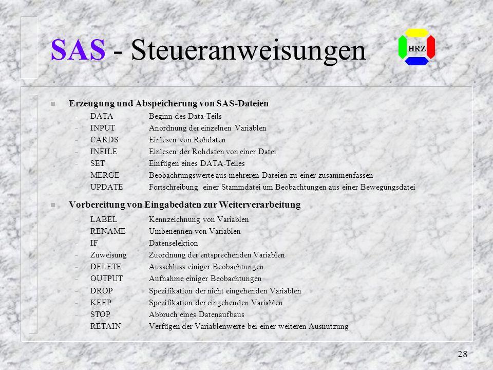 27 HRZ SAS - Beispiel (4) SAS-Job mit der Erstellung einer permanenten SAS-Datei: LIBNAME FIRMA 'C:\HRZ050\SASWORK' ; FILENAME INPUT 'C:\HRZ050\SASWOR