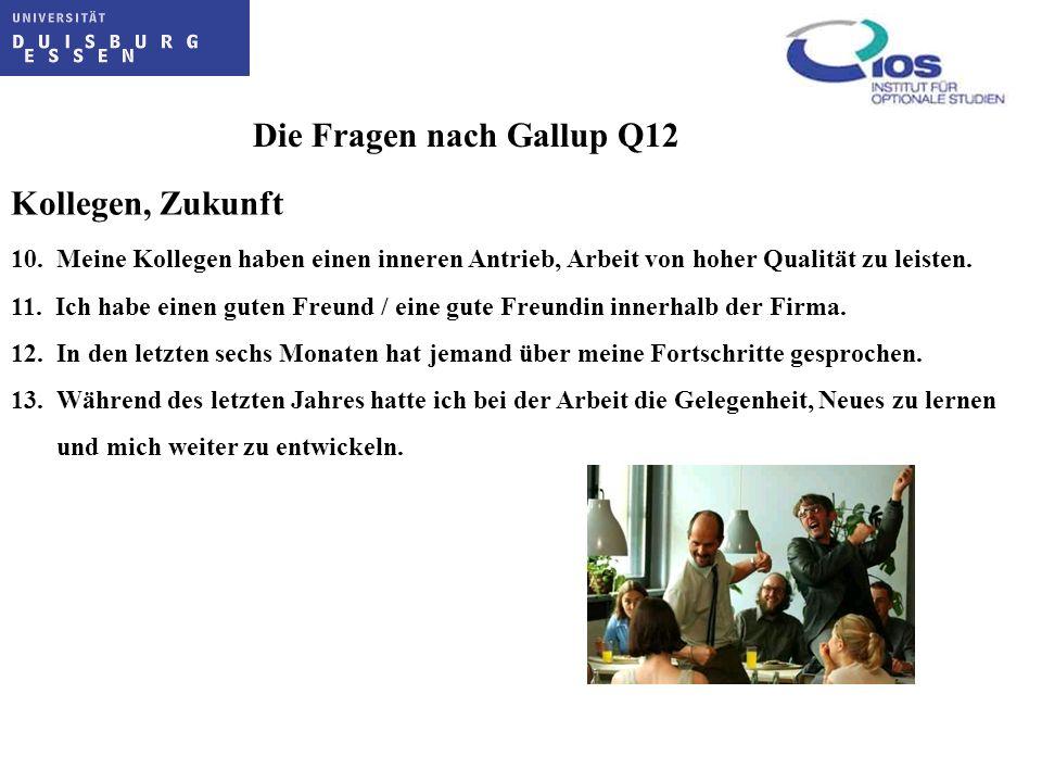 Die Fragen nach Gallup Q12 Kollegen, Zukunft 10. Meine Kollegen haben einen inneren Antrieb, Arbeit von hoher Qualität zu leisten. 11. Ich habe einen