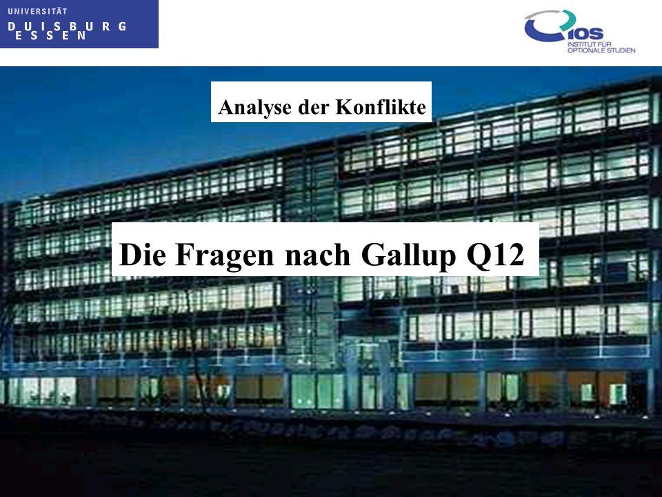 Die Fragen nach Gallup Q12 Analyse der Konflikte