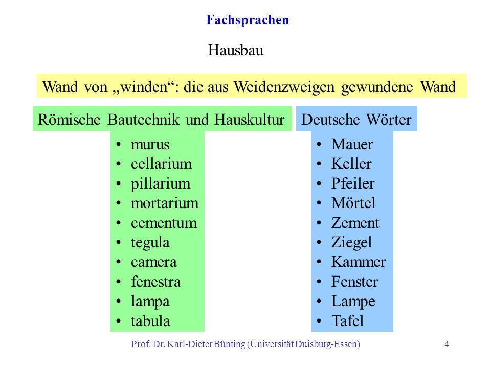 Prof. Dr. Karl-Dieter Bünting (Universität Duisburg-Essen)4 Fachsprachen Hausbau Wand von winden: die aus Weidenzweigen gewundene Wand Römische Bautec