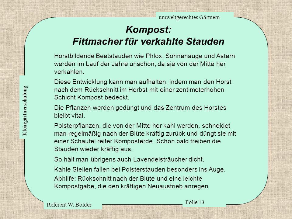 umweltgerechtes Gärtnern Referent W. Bolder Folie 13 Kleingärtnerschulung Kompost: Fittmacher für verkahlte Stauden Horstbildende Beetstauden wie Phlo
