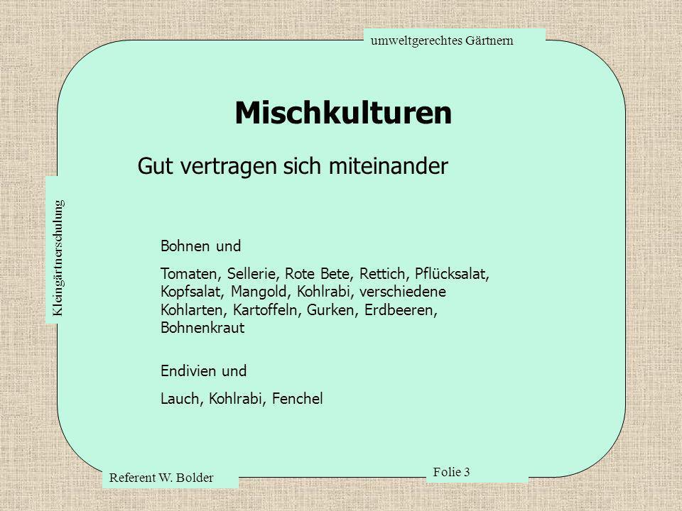 umweltgerechtes Gärtnern Referent W. Bolder Folie 3 Kleingärtnerschulung Mischkulturen Bohnen und Tomaten, Sellerie, Rote Bete, Rettich, Pflücksalat,