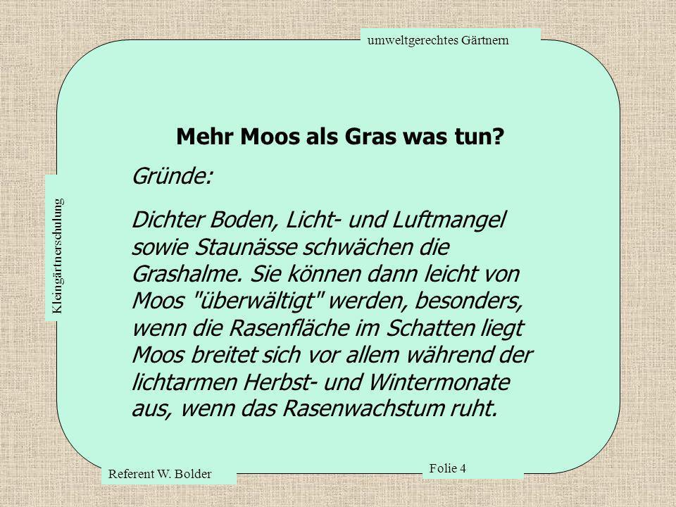 umweltgerechtes Gärtnern Referent W. Bolder Folie 4 Kleingärtnerschulung Mehr Moos als Gras was tun? Gründe: Dichter Boden, Licht- und Luftmangel sowi
