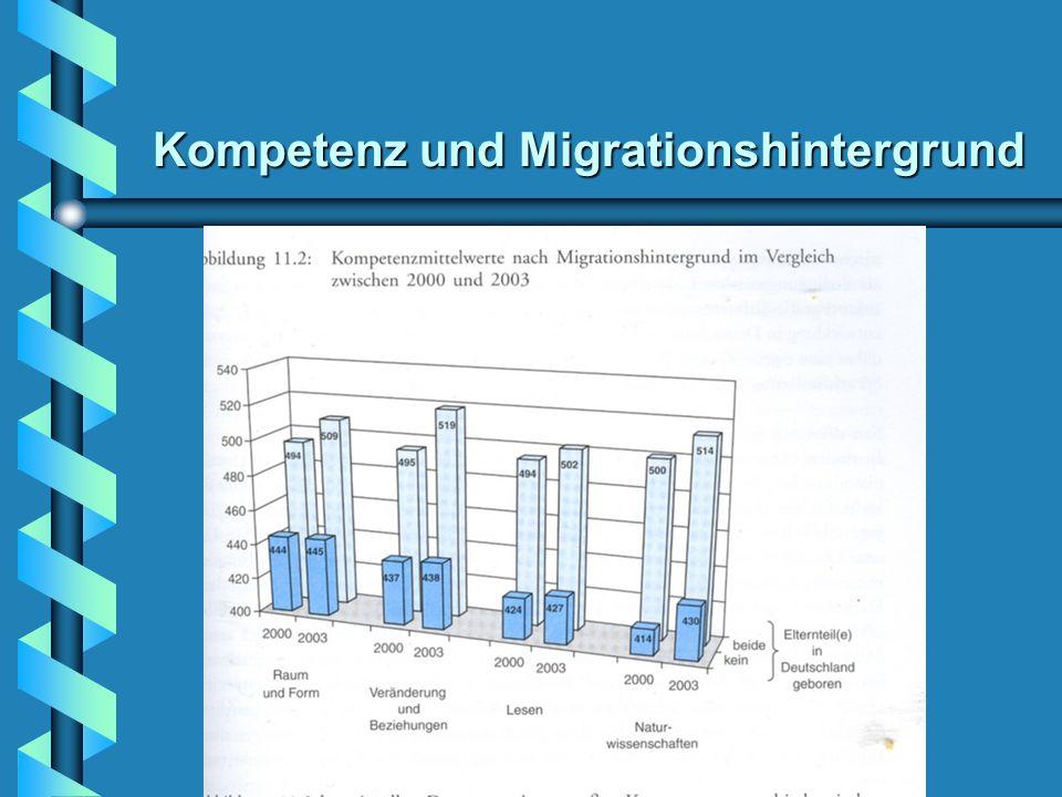 Kompetenz und Migrationshintergrund