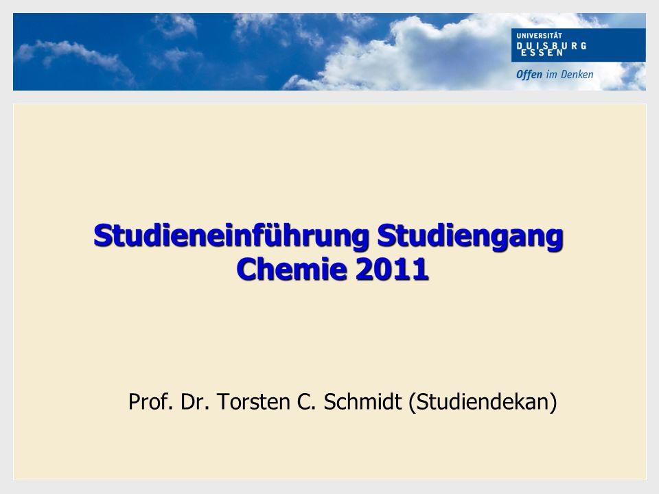 Hier kann Ihr Text stehen Prof. Dr. Torsten C. Schmidt (Studiendekan)