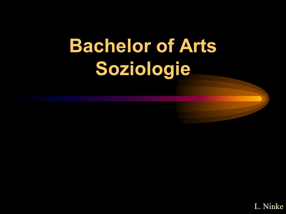 Bachelor of Arts Soziologie L. Ninke