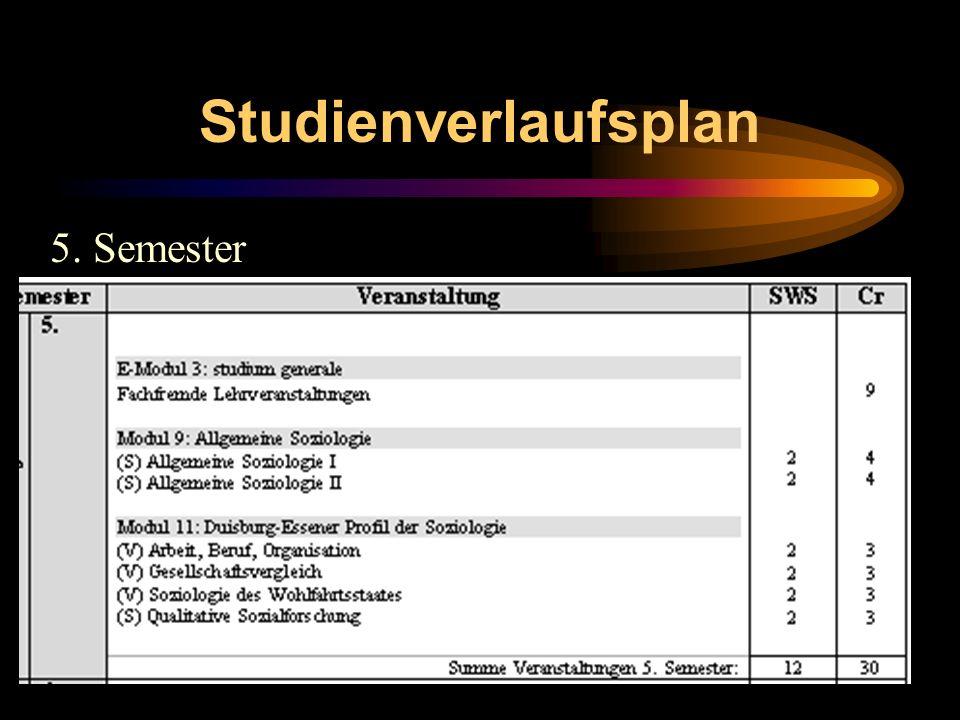 Studienverlaufsplan 5. Semester